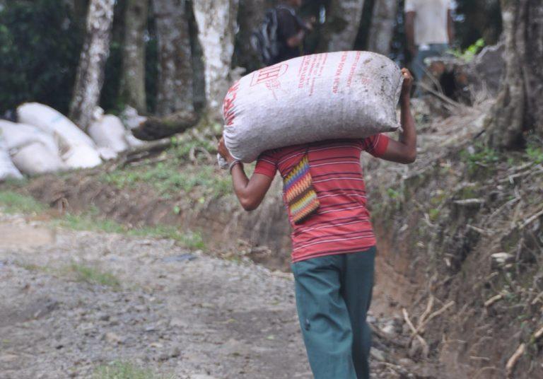 Une personne transporte un lourd sac de provision