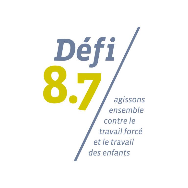 Logo du Défi 8.7