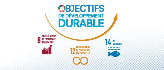 Illustration des objectifs du développement durable